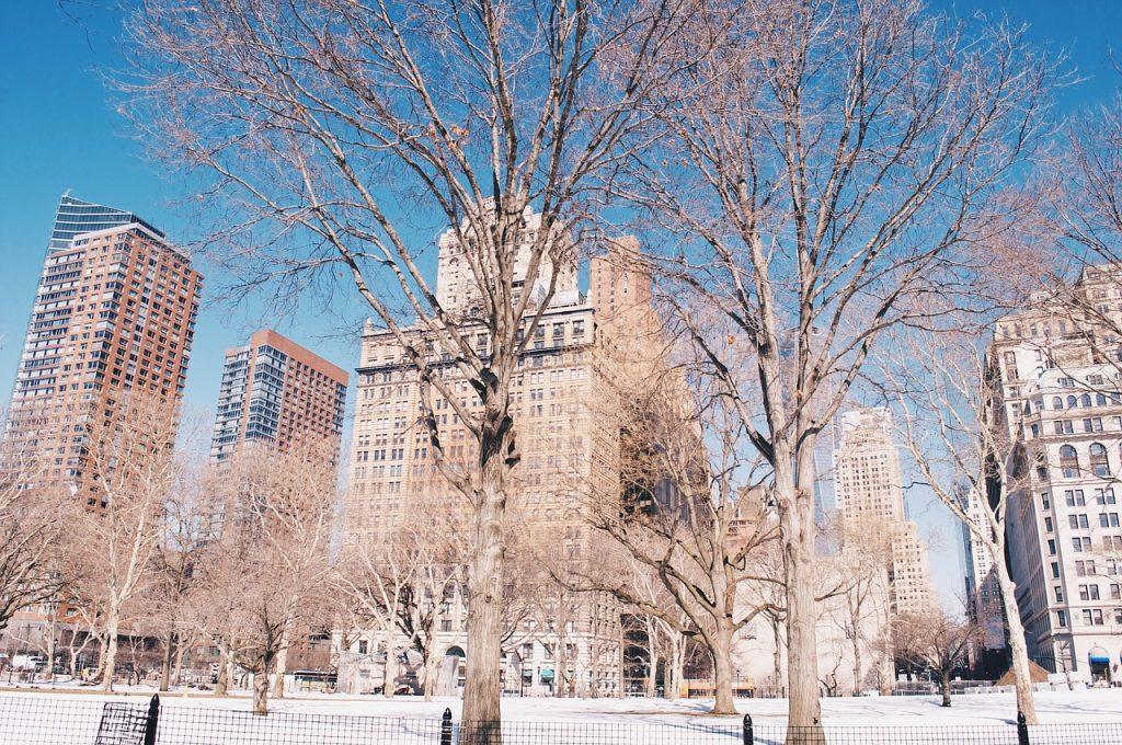 Cosas Para Hacer en Invierno en New York